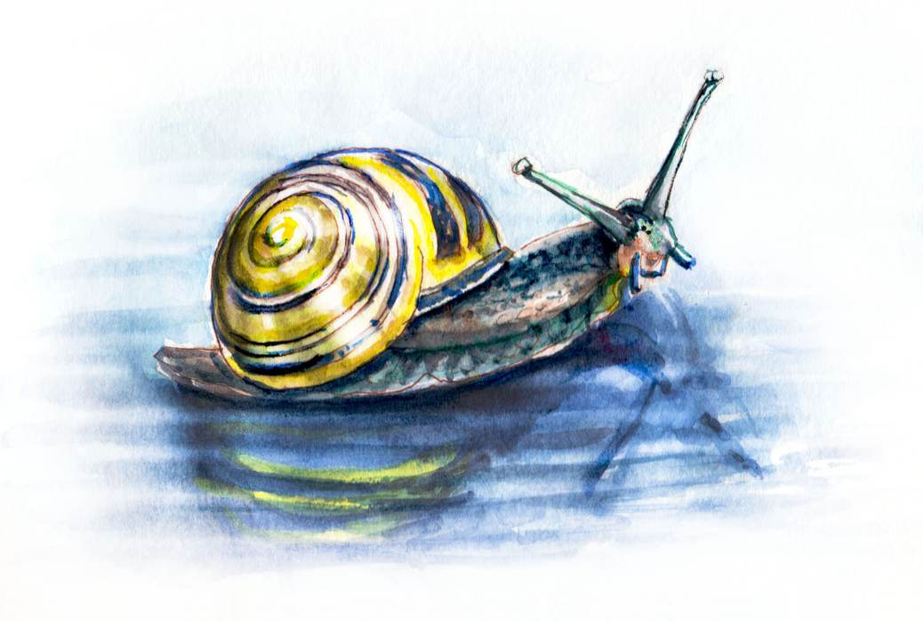 Day 30 - World Watercolor Month - Stormy Days And Snails - Doodlewash