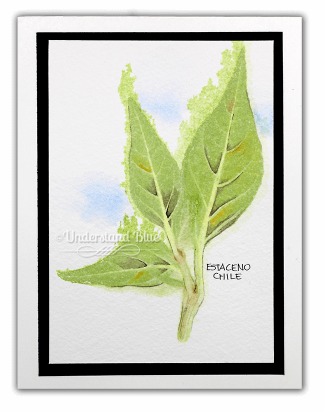 Day 9 – a chlorophyll print, that I then watercolored shading onto with Daniel Smith watercolo