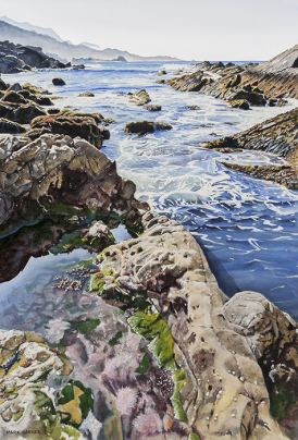 World Watercolor Month - Watercolor by Mark Garner - Point Lobos - Doodlewash