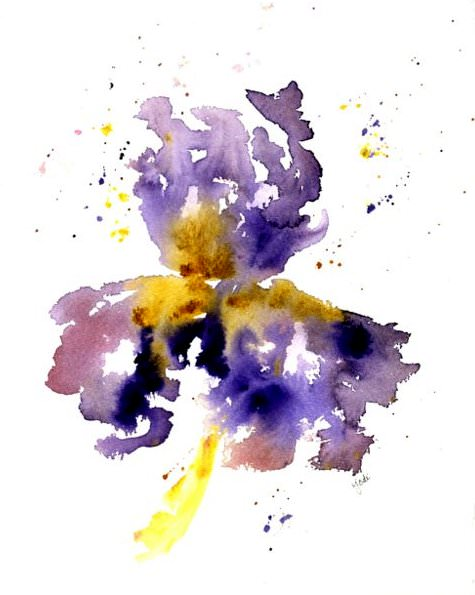 Purple Iris 1 Purple Iris Watercolor 1 021917