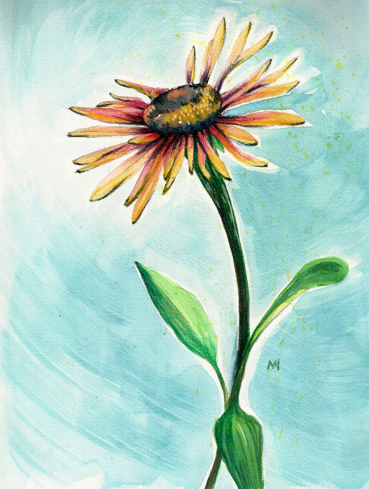 Day 29: Coneflowers are starting to bloom! SCAN0238
