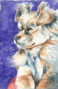 Day 30: I love how serious this little guy looks. 4″ x 6″ SCAN0239