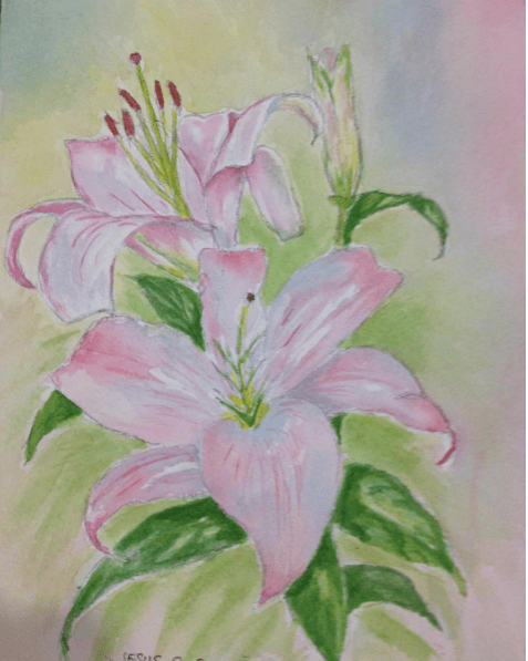 Stargazer Lily    11×7.5 in Screen Shot 2017-07-28 at 5.59.10 AM