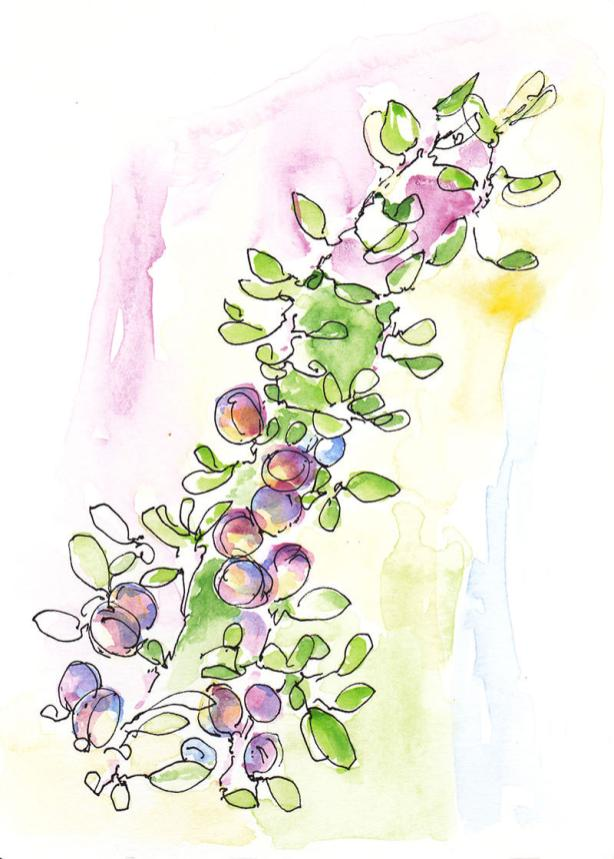 World Watercolor Month 2017 - Watercolour sketch by Luiza Varovici - #WorldWatercolorMonth #doodlewash