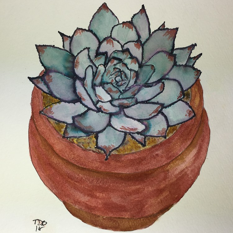 """8"""" x 8"""" non traditional watercolor. Succulent was created with the Elegant Writer pen and water."""