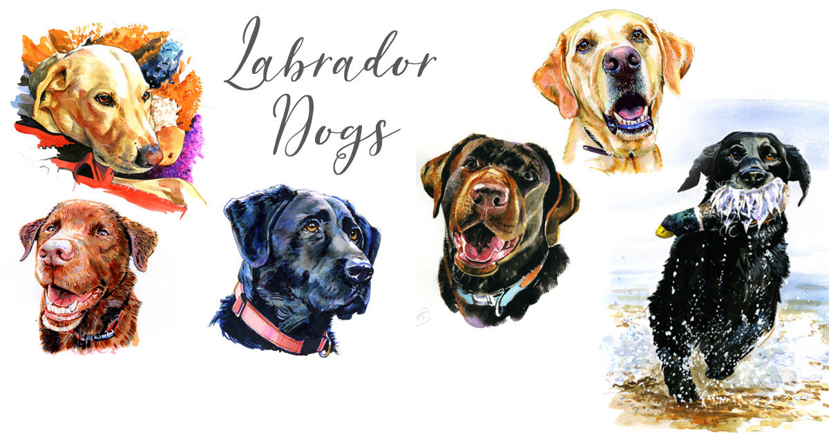 #WorldWatercolorGroup - dog illustrations - Watercolour by Tim Olden - Doodlewash