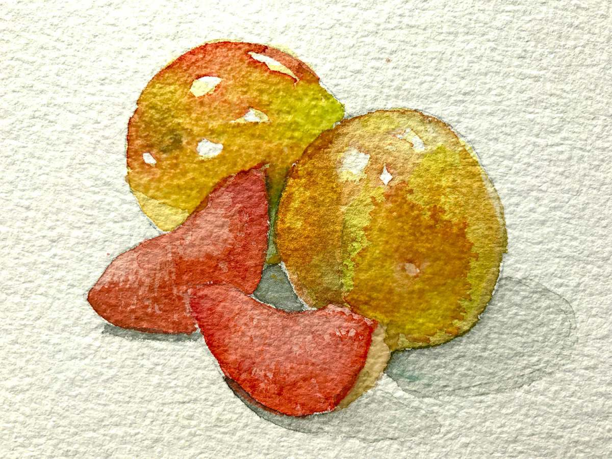 #WorldWatercolorGroup - Watercolor by Brittany Lane Allen - fruit - Doodlewash