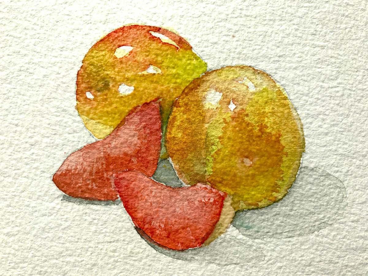 #WorldWatercolorGroup - Watercolor by Brittany Lane Allen - fruit - Doodlewash