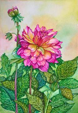 #WorldWatercolorGroup - Dahlia Watercolour Painting - Saswati Chakraborty - Doodlewash