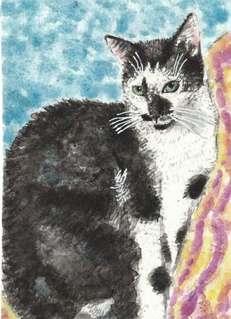 Bebe a friends cat watercolor painting IMG_20170920_0001