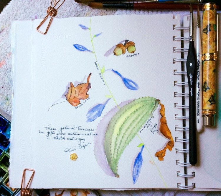 Little bits of nature I picked up to paint. Haiku: 'These gathered treasures Are gifts from au