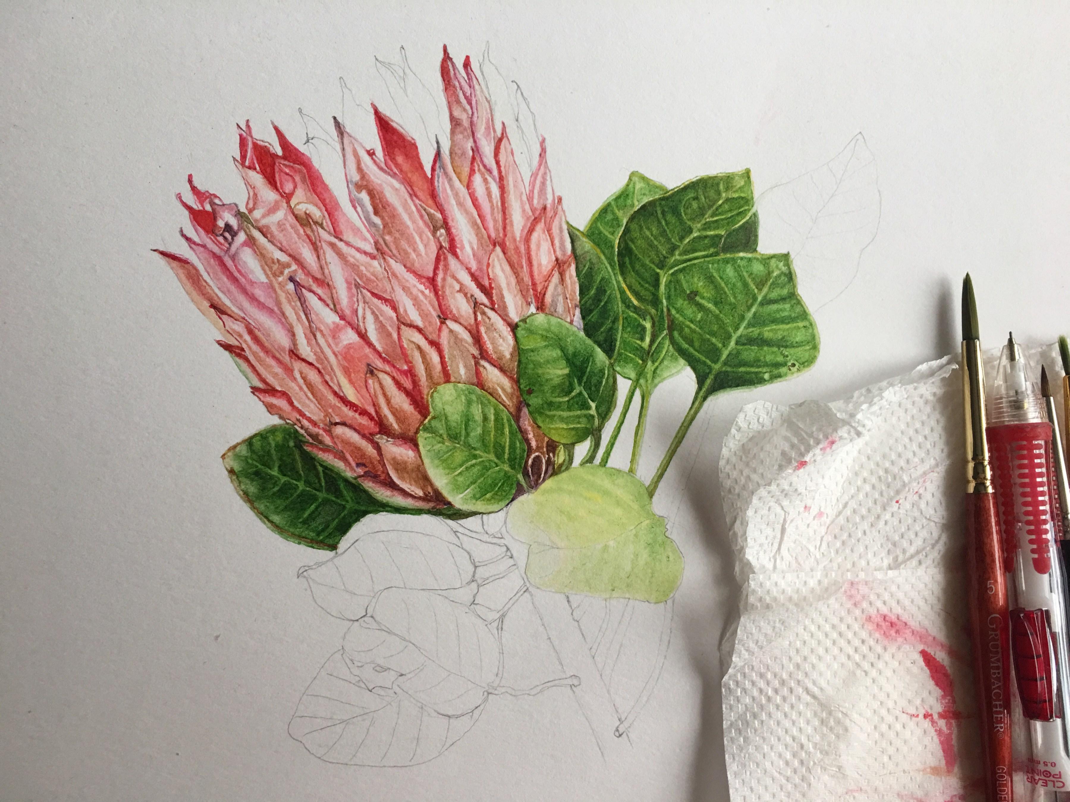 """Watercolor Botanical Painting Tutorial"""