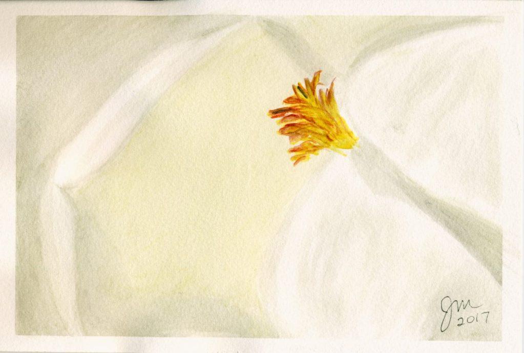 2017 Ansel Adams inspired2017 Magnolia Bloom2017 Mountain scene notecard2017 Sunflower notecard (2)2