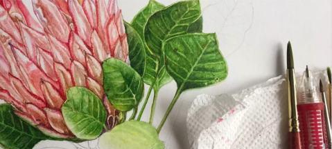 #WorldWatercolorGroup - Watercolor Botanical Painting Tutorial - Saswati Misra - Doodlewash