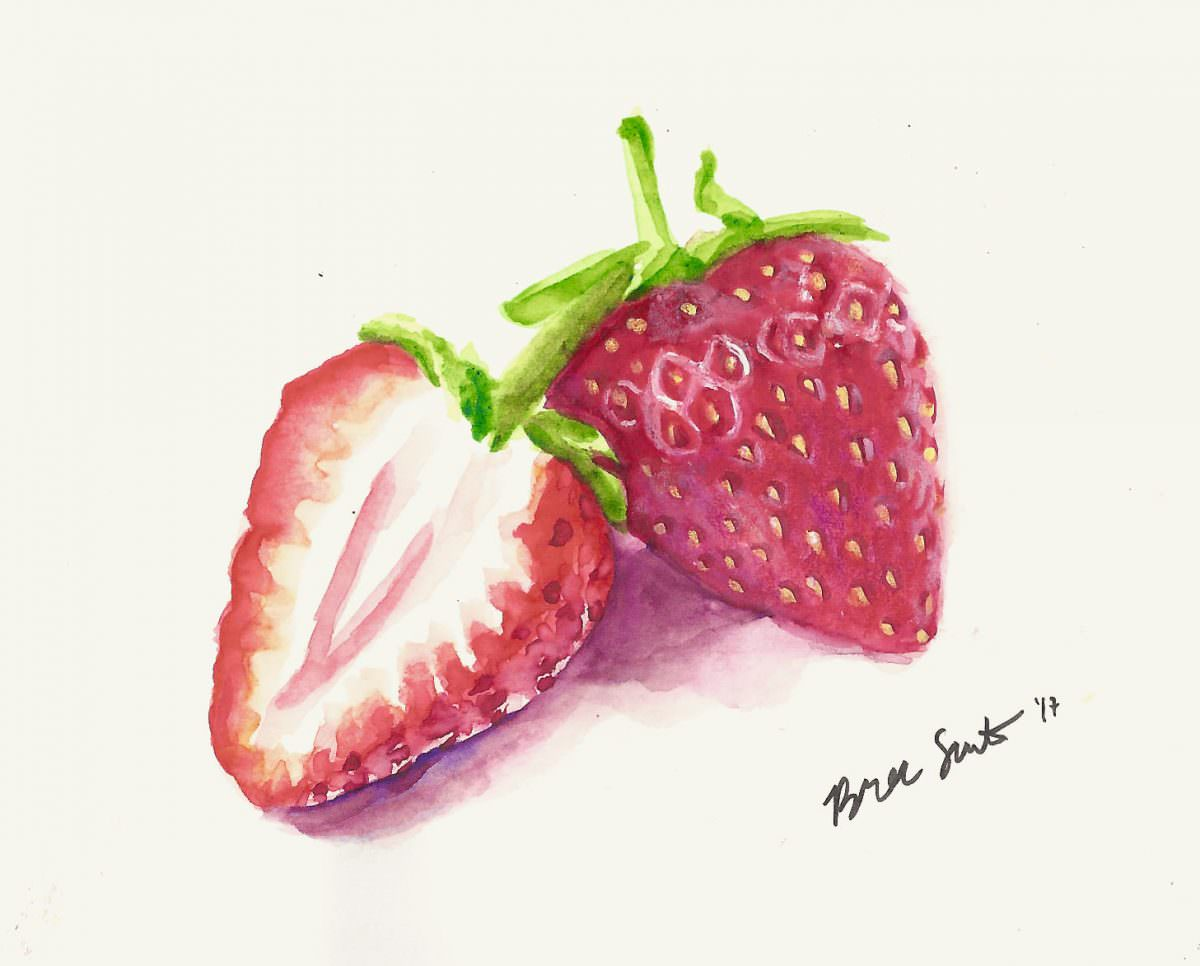 #WorldWatercolorGroup - Watercolor by Bree Smith - Strawberries - Doodlewash