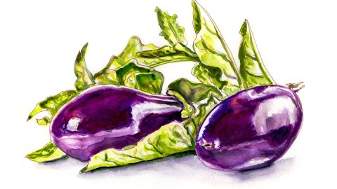 #WorldWatercolorGroup - Day 19 - Eggplant Or Aubergine - Doodlewash