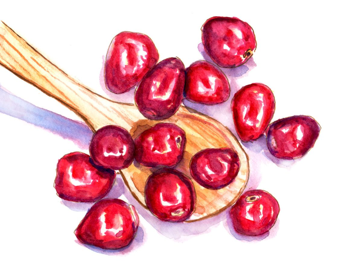 A Spoonful Of Cranberries