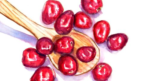 #WorldWatercolorGroup - Day 23 - A Spoonful Of Cranberries - Thanksgiving 2017 - Doodlewash