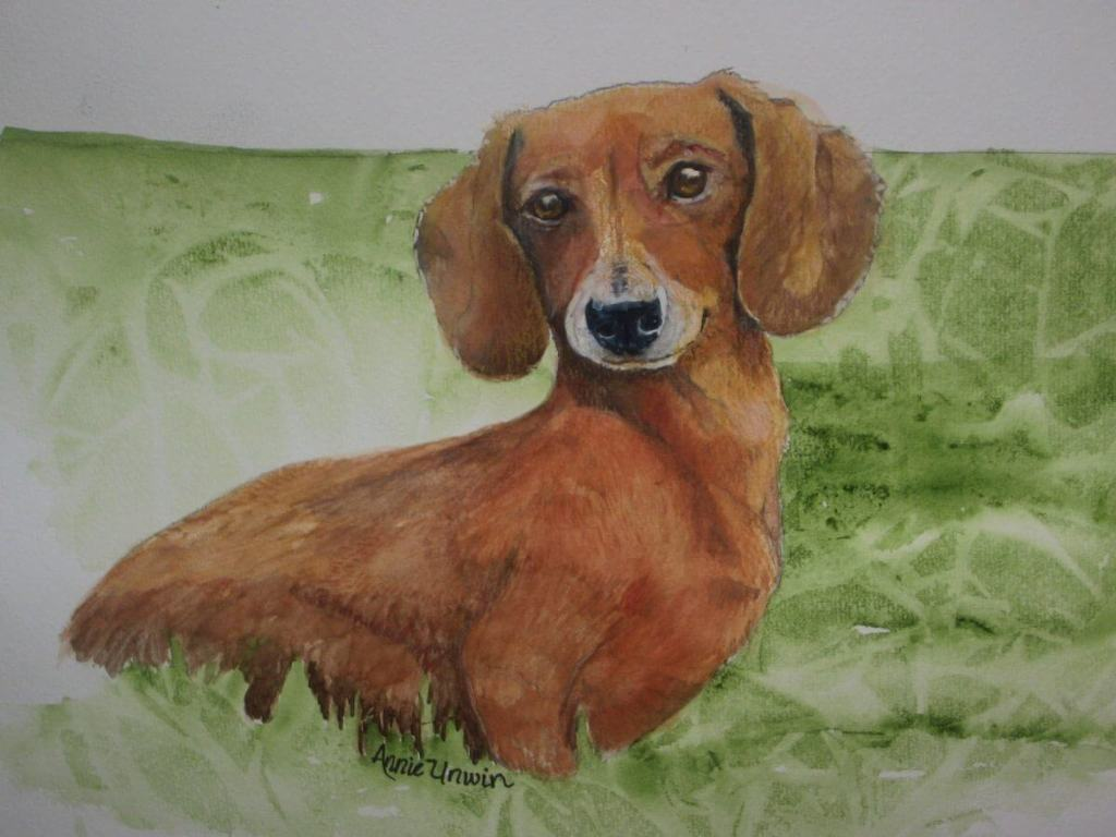 I had a request to donate a piece of artwork for a Doxie rescue group. This is a picture I did for t