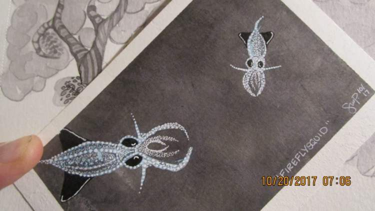 first effort at Firefly Squid. watercolor, ink, white pen IMG_2659