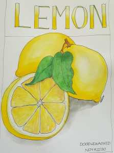 LEMON ~ @doodlewashed November 22/30 A lovely quick sketch I enjoyed doing in the late afternoon. No