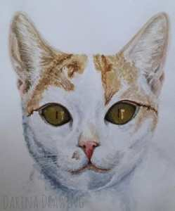 А girlfriend asked me to paint her kitty. Meet Bistra.Bistra
