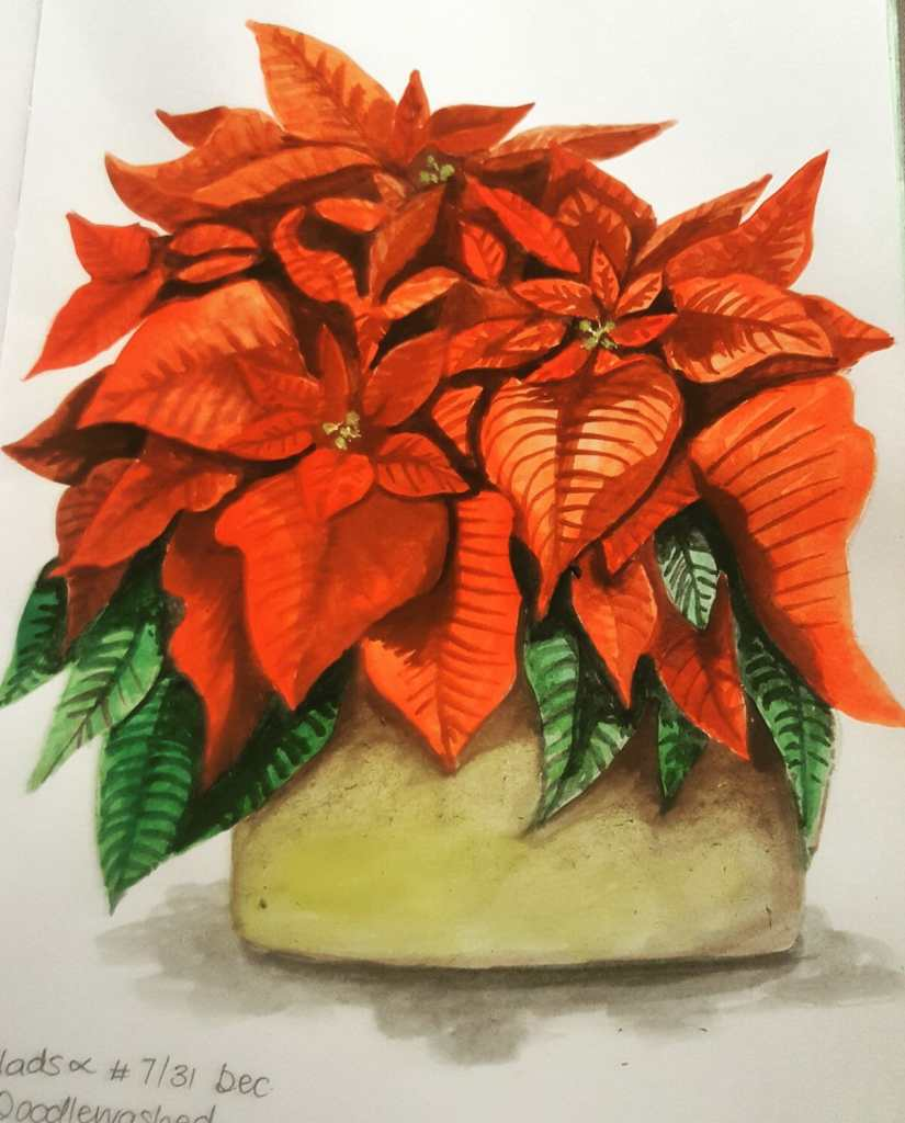 POINSETTIA ~ 7/31 @Doodlewashed December sketch challenge I really enjoyed doing this sketch! #Doodl
