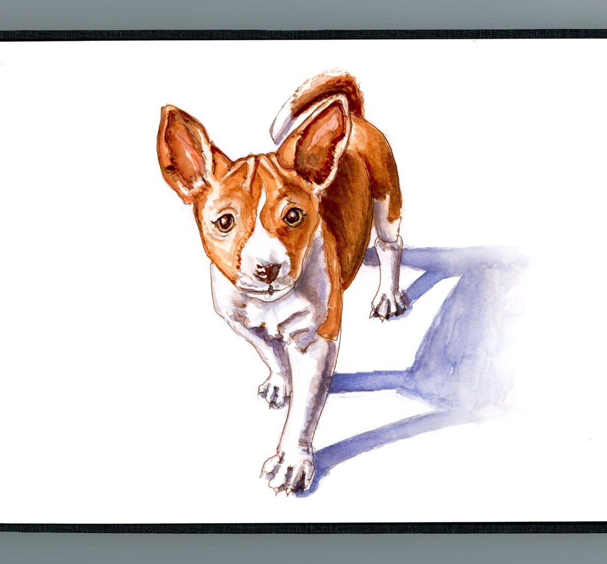 #WorldWatercolorGroup - Day 15 - Baby Basenji Watercolor - Doodlewash