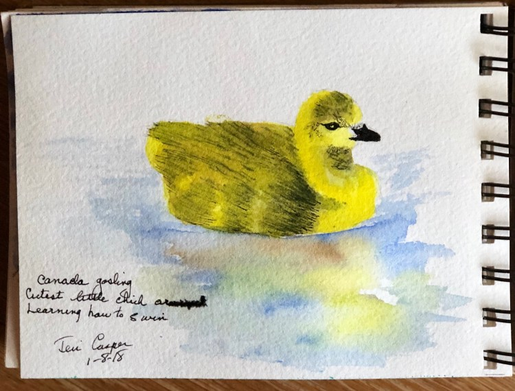 The prompt today at World Watercolor Group is 'chick'. Haiku: 'Canada gosling Cute