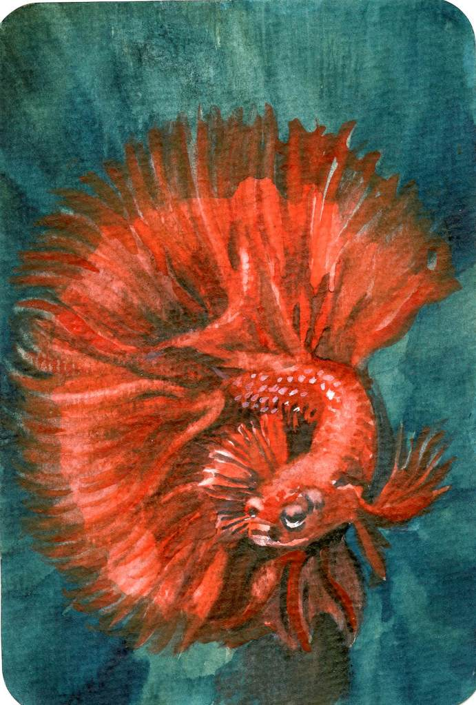 Schmincke Geranium & DV Prussian Blue (GS) on Hahnemühle Watercolor Postcard. Schmincke Geraniu