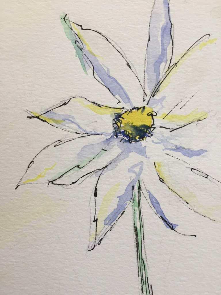 Simple play daisy