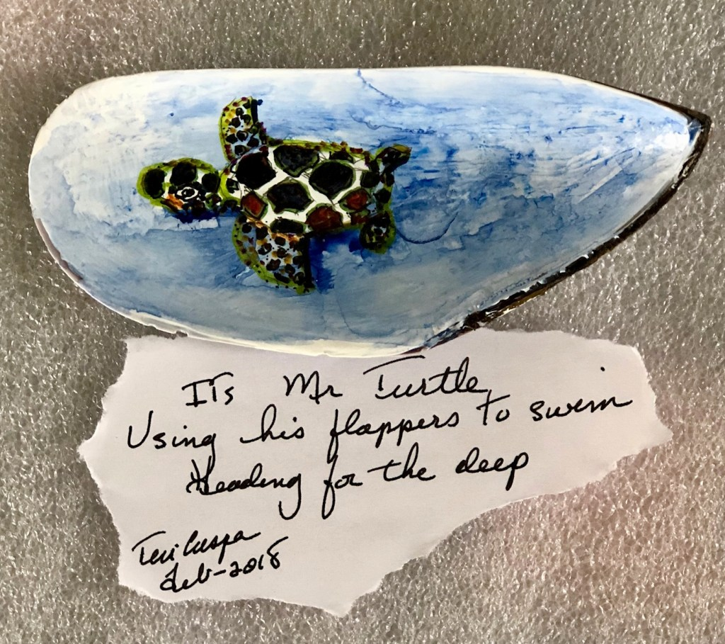 My last clam shell features a turtle swimming along. Haiku: 'It's Mr Turtle Using his flappe