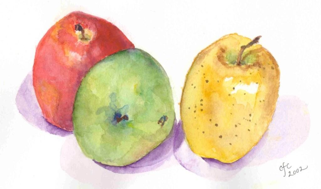Apple Still Life Apple Still Life