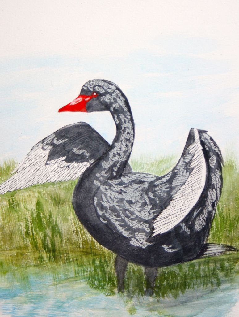 World Watercolor Group™FEB CHALLENGE DAY 24—THE BLACK SWAN (sorry feathers still on bir