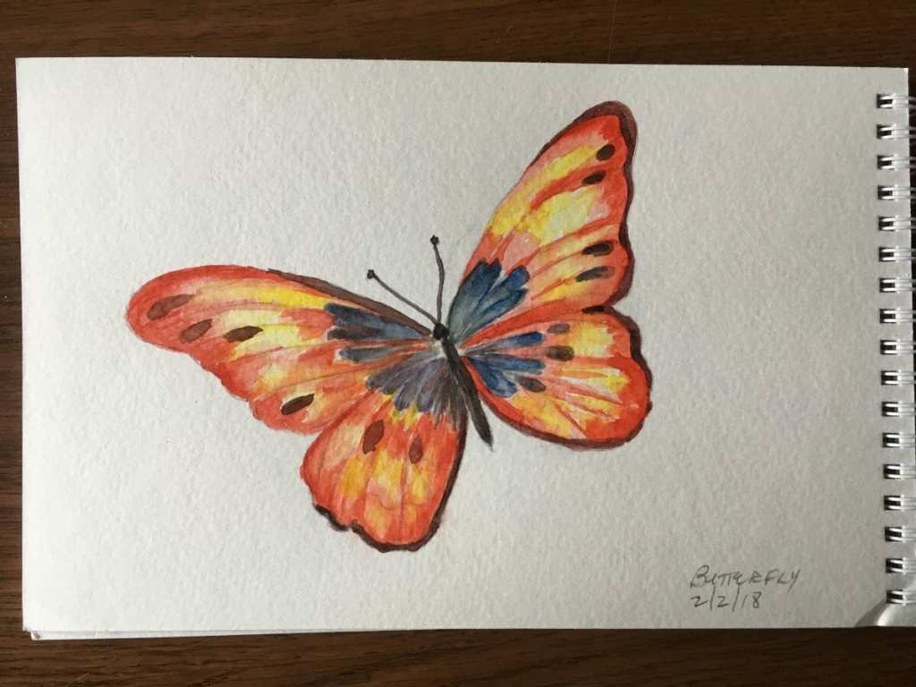 These are my sketches for the first week of the Februaru challenge. In order they are butterfly, bee