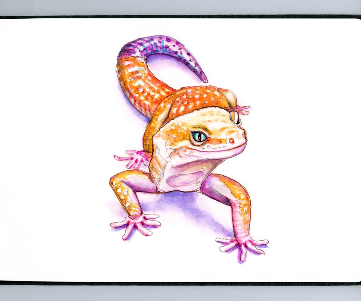 #WorldWatercolorGroup - Day 10 - A Candy Colored Gecko - Doodlewash