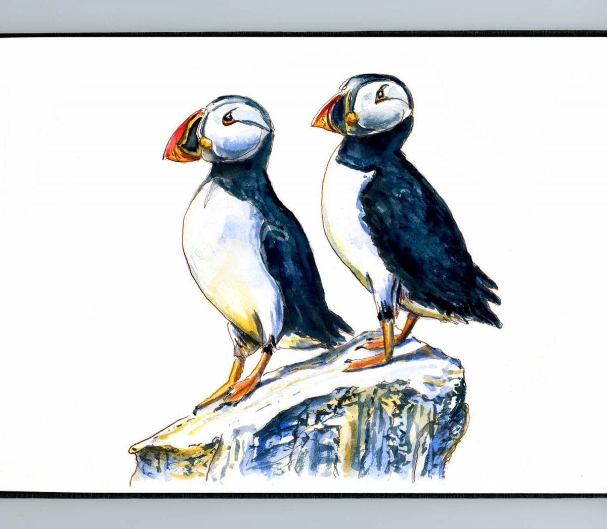 #WorldWatercolorGroup - Day 6 - Puffins On A Rock - Doodlewash