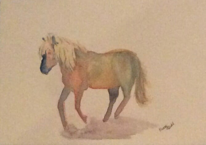 "My pony Ian Charles. Fabriano 140 lb cold press paper 7×10"" Sennelier watercolors. My ow"