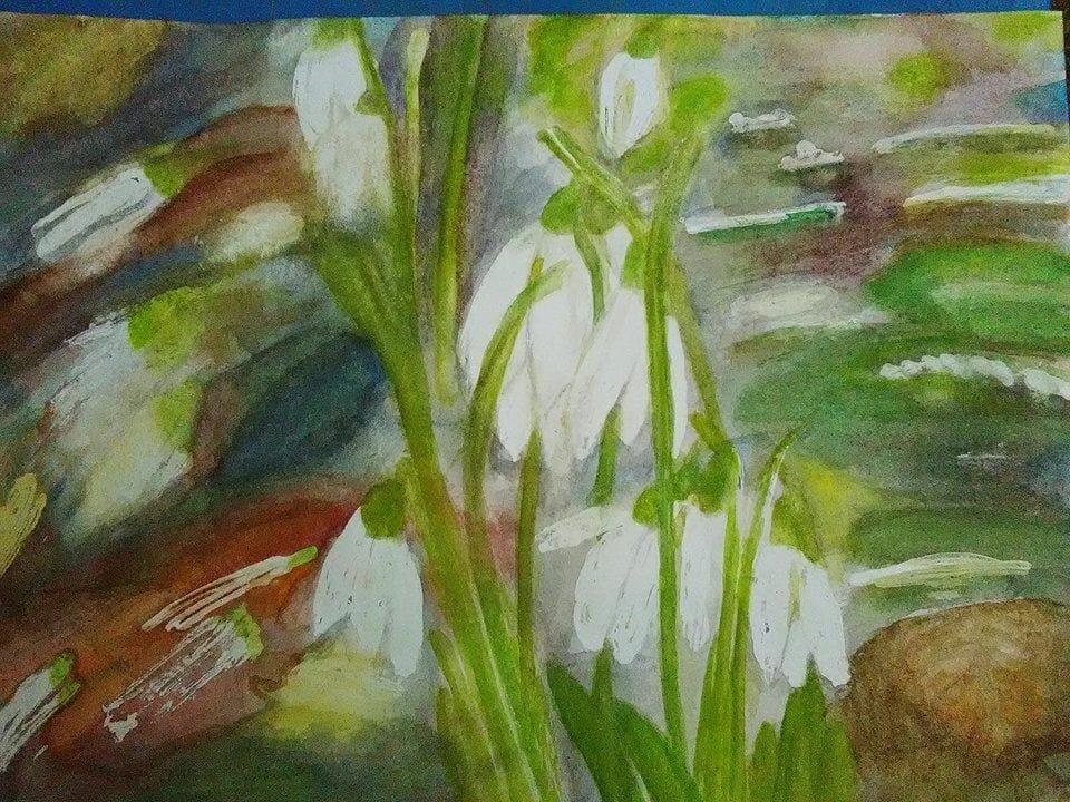 Challenge 7. február – wild flowers. snežienky