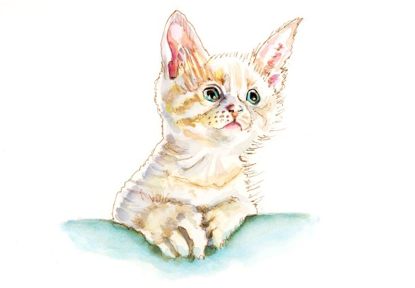 #WorldWatercolorGroup - Day 10 - Tiny LIttle Kitten - The Tiniest Of Things - Doodlewash