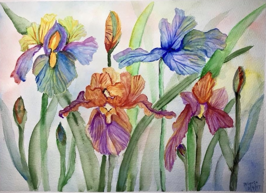"""Rainbow Irises""… Kuzakabe Watercolor Paints on Arches Paper… 9″ x 12&"