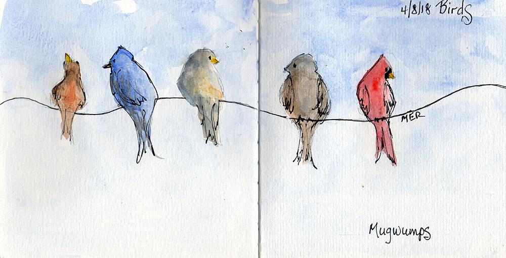 4/8/18 Birds 4.8.18 Birds img483