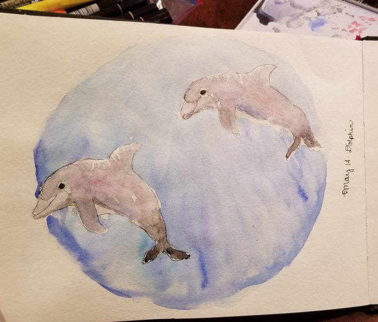 #Doodlewash May 14: dolphins! Who doesn't love dolphins? #worldwatercolorgroup 20180514_223902