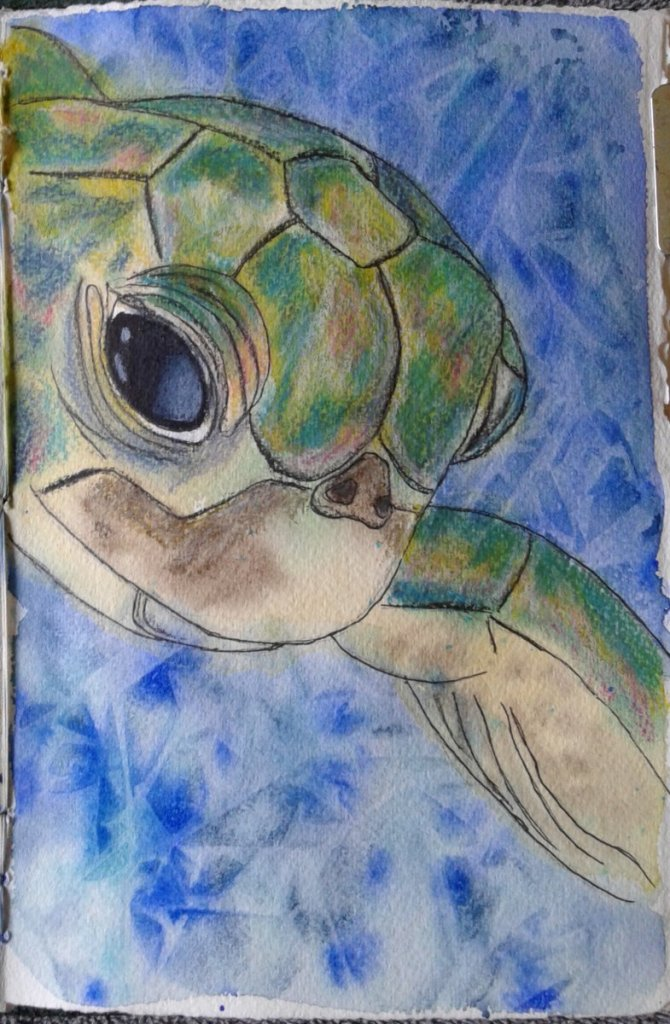 Day 325…sea turtle Sea turtles are kind of awesome. They swim slowly and gracefully like an un