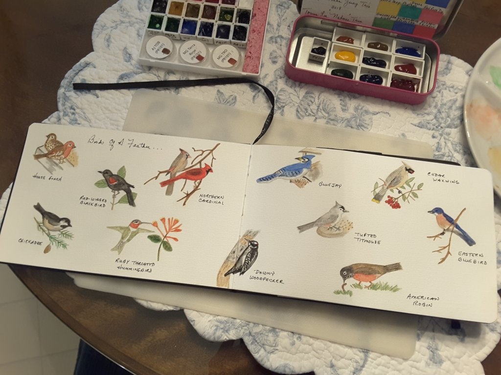 I think I have seen at least one of each of these birds in the yard. Oh my…I keep feeding, the