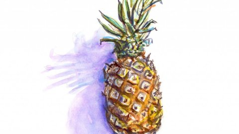 Day 27 - Pineapple Watercolor Illustration #doodlewashJune2018 Doodlewash