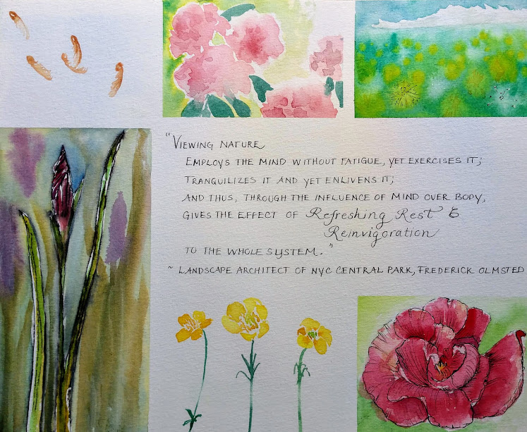 Using Hahnemühle Expression watercolor paper - painting examples