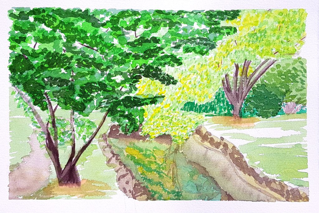 Afew of the results from attending my first art classes while i'm on holiday in Madrid. Feel s