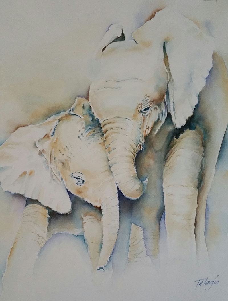 Watercolor Painting by Telagio Baptista - Doodlewash