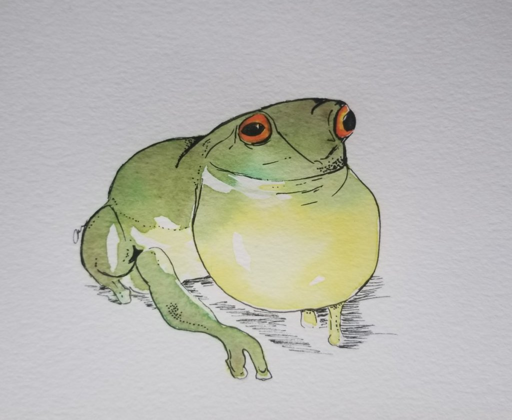 The wet and dry prompt had me stumped. I thought a frog would be perfect since it can go on both lan